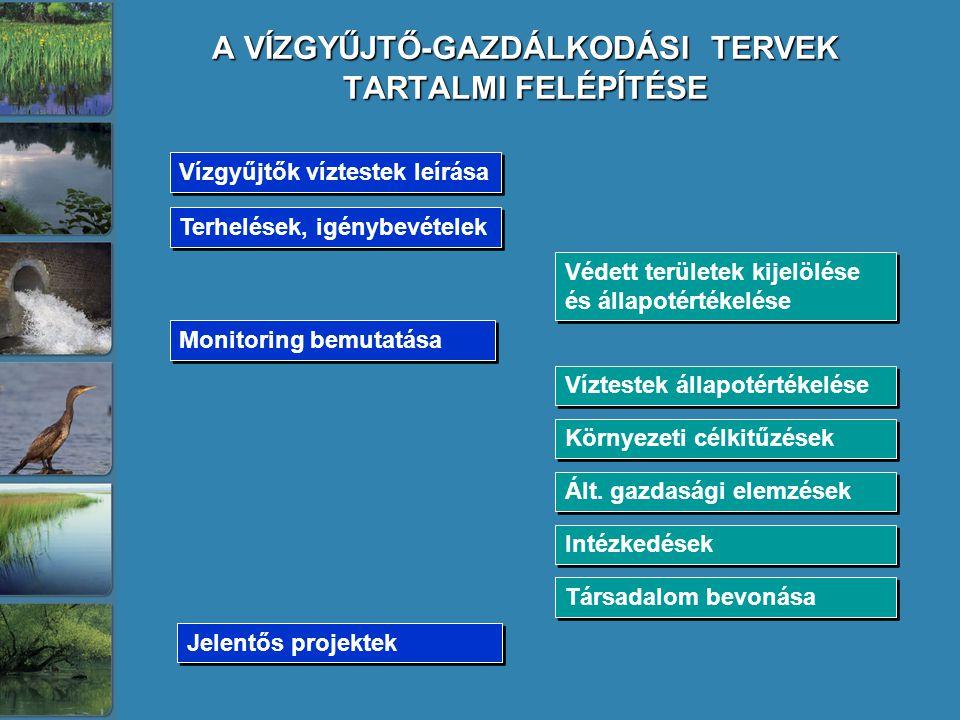 A VÍZGYŰJTŐ-GAZDÁLKODÁSI TERVEK TARTALMI FELÉPÍTÉSE