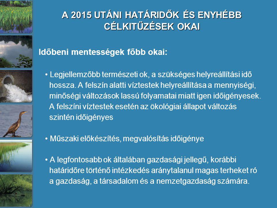 A 2015 UTÁNI HATÁRIDŐK ÉS ENYHÉBB CÉLKITŰZÉSEK OKAI