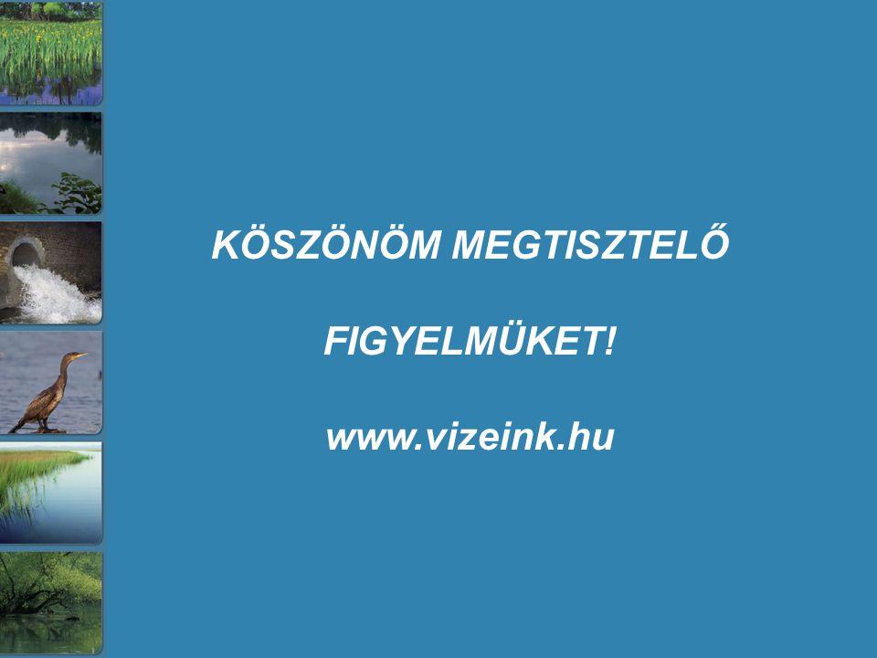 KÖSZÖNÖM MEGTISZTELŐ FIGYELMÜKET! www.vizeink.hu