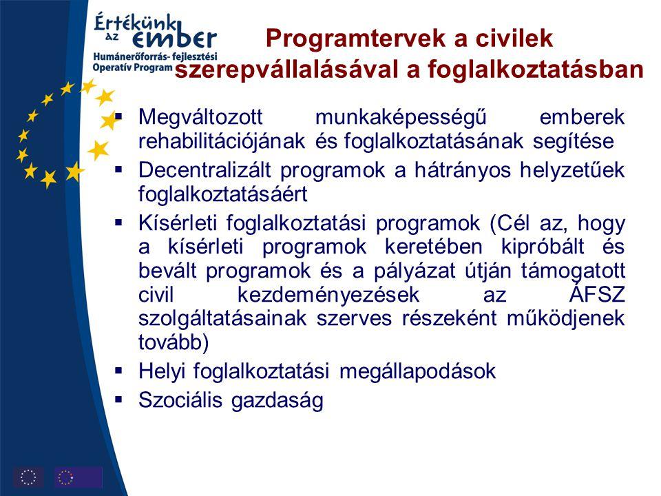 Programtervek a civilek szerepvállalásával a foglalkoztatásban