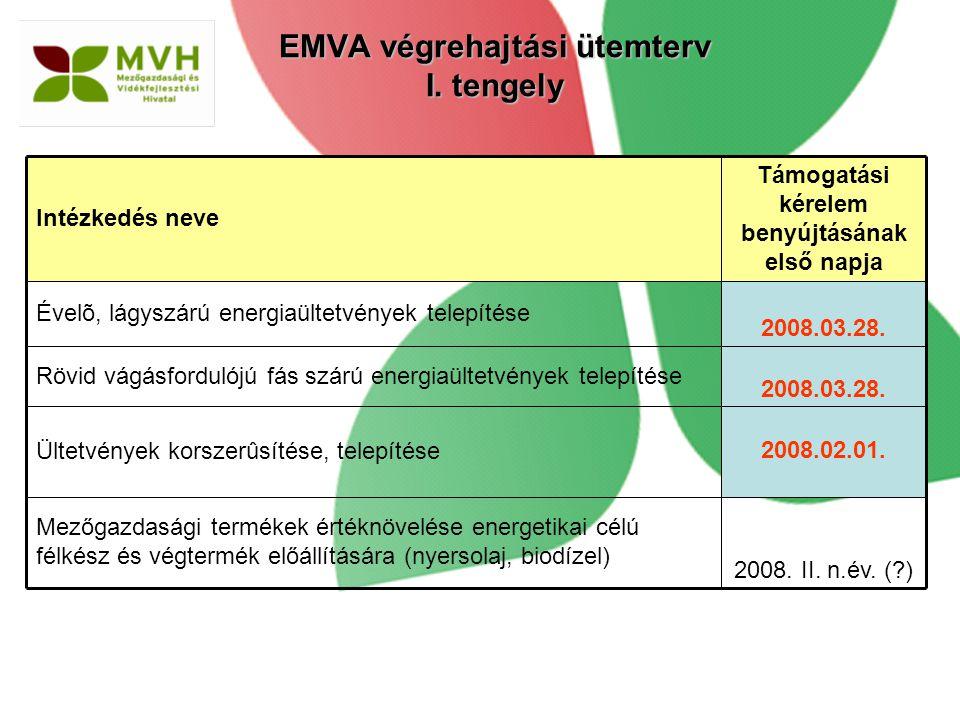 EMVA végrehajtási ütemterv I. tengely