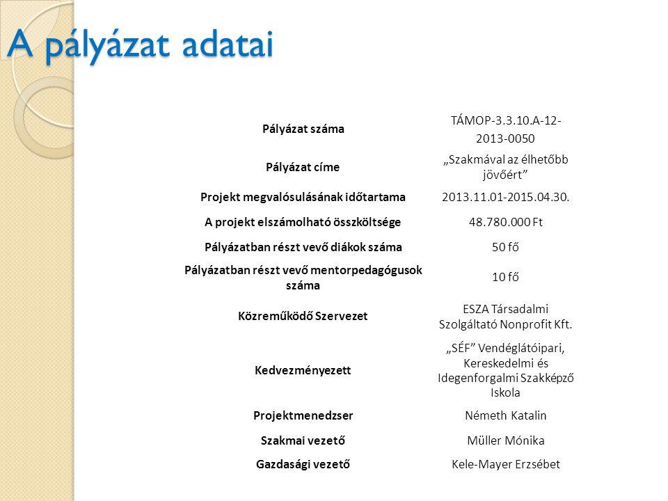 A pályázat adatai Pályázat száma TÁMOP-3.3.10.A-12-2013-0050