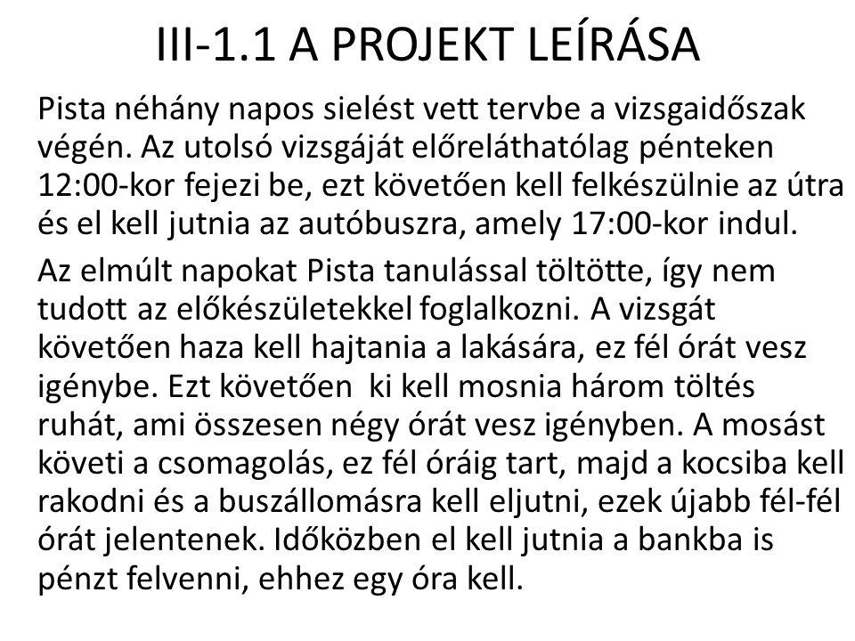 III-1.1 A PROJEKT LEÍRÁSA