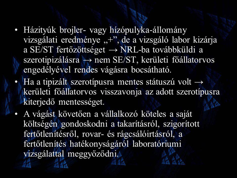 """Házityúk brojler- vagy hízópulyka-állomány vizsgálati eredménye """"+ , de a vizsgáló labor kizárja a SE/ST fertőzöttséget → NRL-ba továbbküldi a szerotipizálásra → nem SE/ST, kerületi főállatorvos engedélyével rendes vágásra bocsátható."""