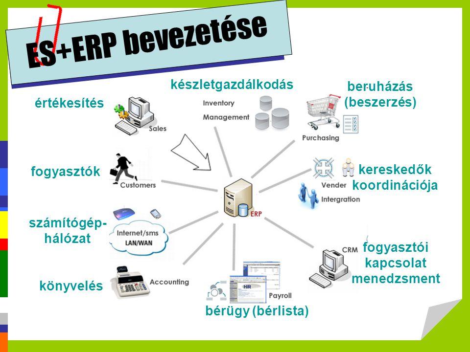 ES+ERP bevezetése készletgazdálkodás beruházás (beszerzés) értékesítés