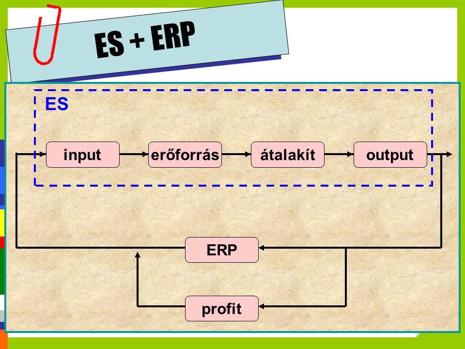ES + ERP ES input erőforrás átalakít output ERP profit