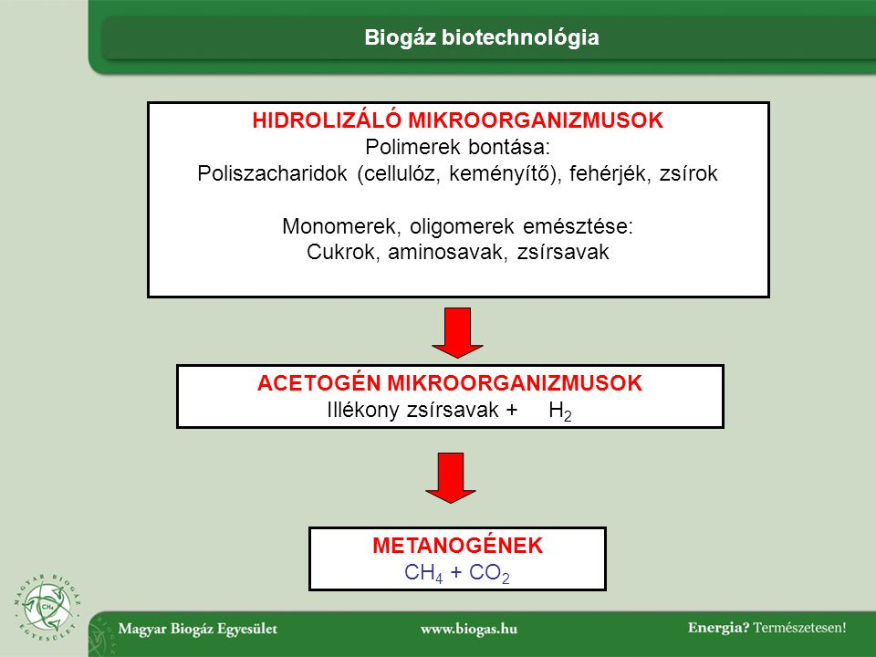 Biogáz biotechnológia