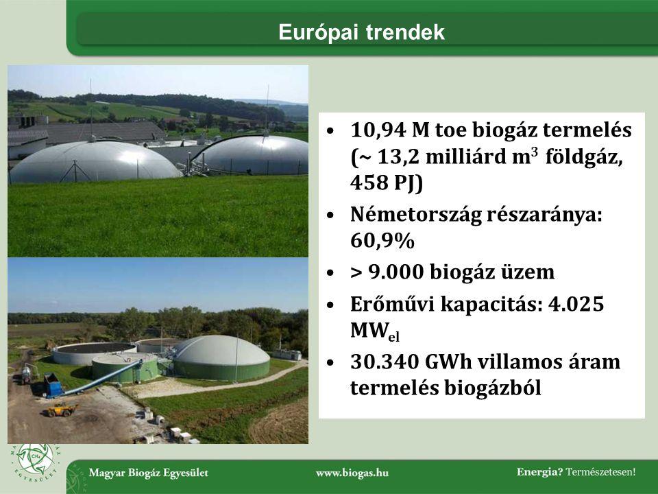 Európai trendek 10,94 M toe biogáz termelés (~ 13,2 milliárd m3 földgáz, 458 PJ) Németország részaránya: 60,9%