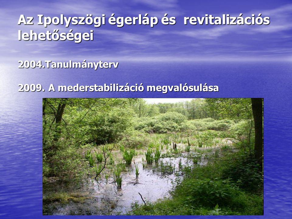 Az Ipolyszögi égerláp és revitalizációs lehetőségei 2004
