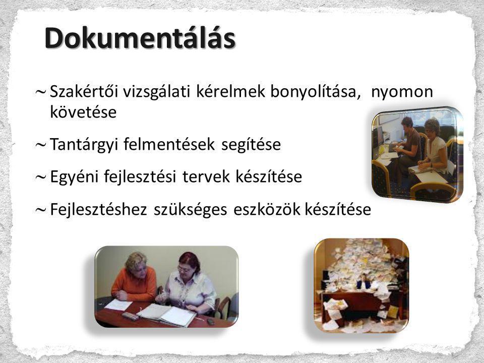 Dokumentálás Szakértői vizsgálati kérelmek bonyolítása, nyomon követése. Tantárgyi felmentések segítése.