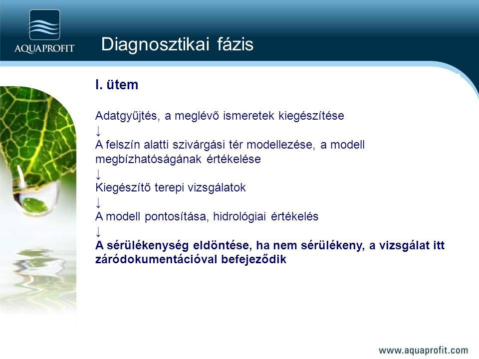 Diagnosztikai fázis I. ütem
