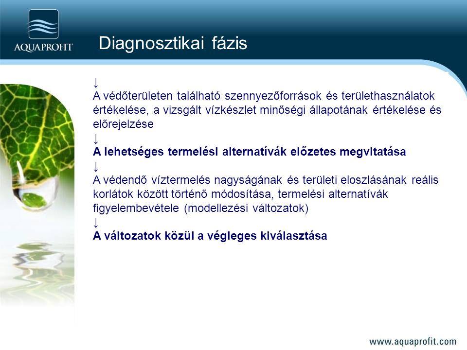 Diagnosztikai fázis ↓