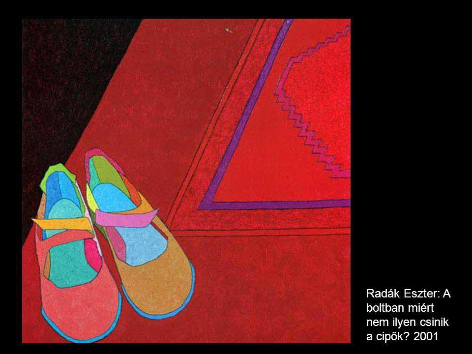 Radák Eszter: A boltban miért nem ilyen csinik a cipők 2001
