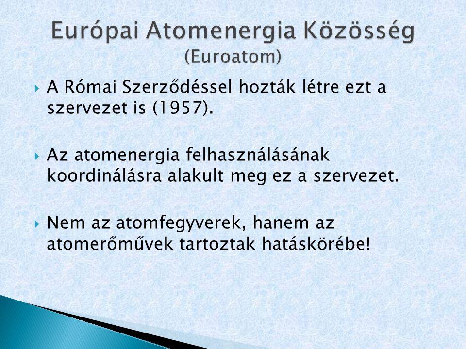 Európai Atomenergia Közösség (Euroatom)