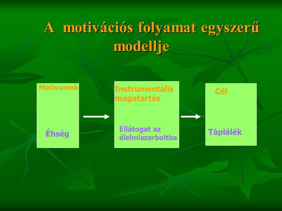 A motivációs folyamat egyszerű modellje