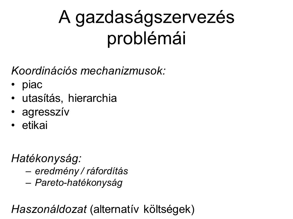 A gazdaságszervezés problémái