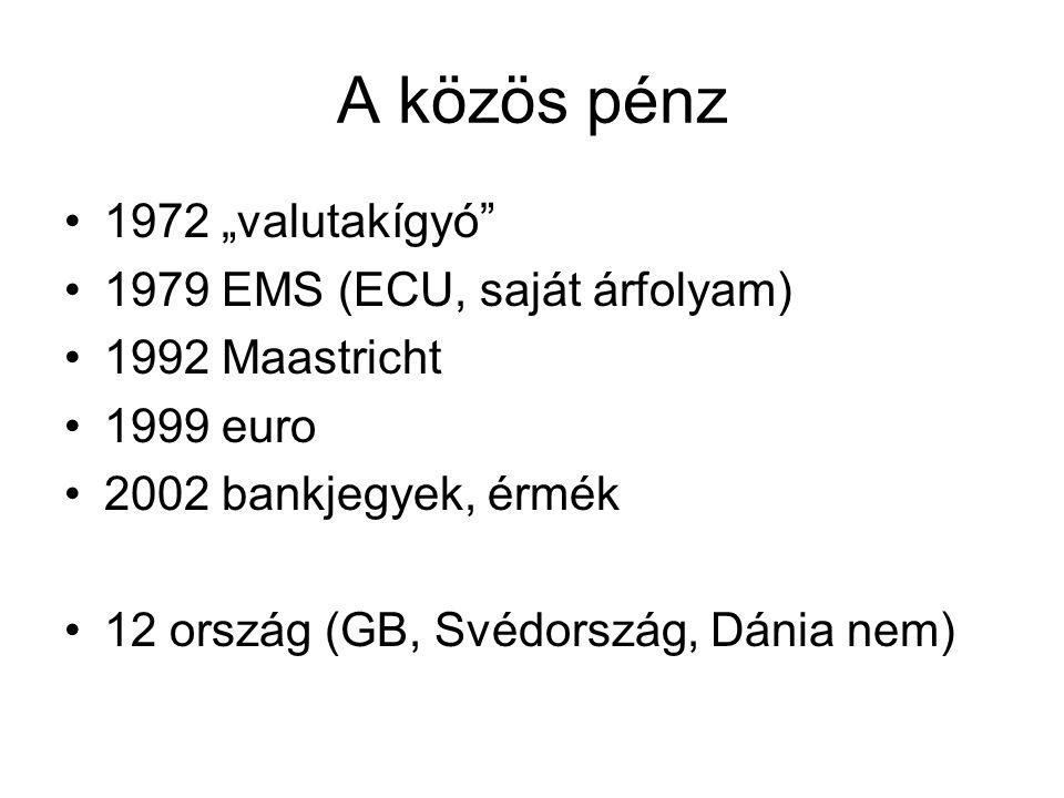 """A közös pénz 1972 """"valutakígyó 1979 EMS (ECU, saját árfolyam)"""