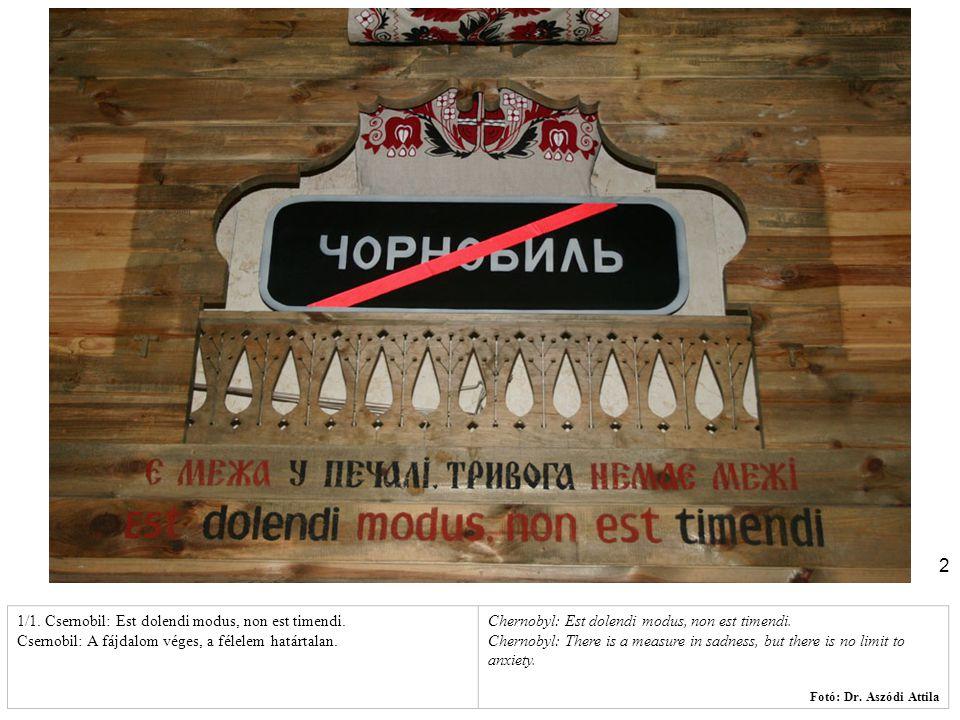 1/1. Csernobil: Est dolendi modus, non est timendi.