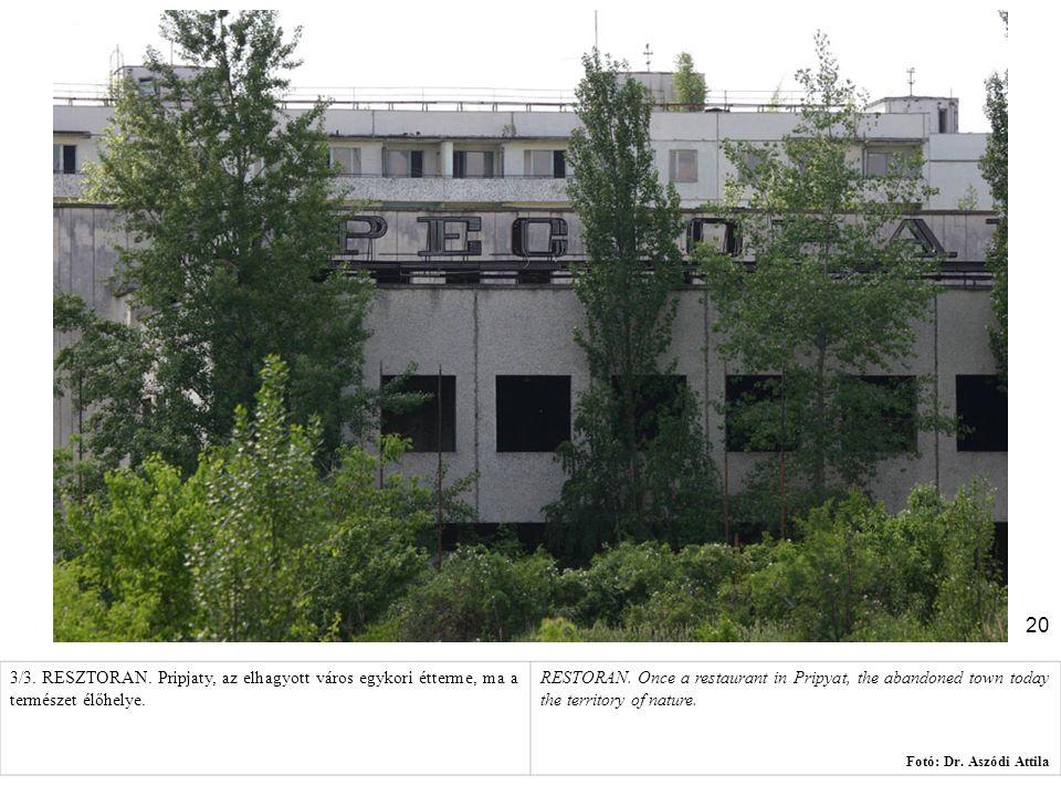 3/3. RESZTORAN. Pripjaty, az elhagyott város egykori étterme, ma a természet élőhelye.