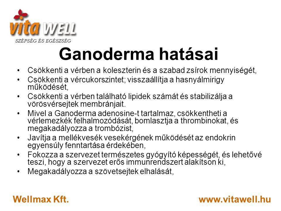 Ganoderma hatásai Wellmax Kft. www.vitawell.hu