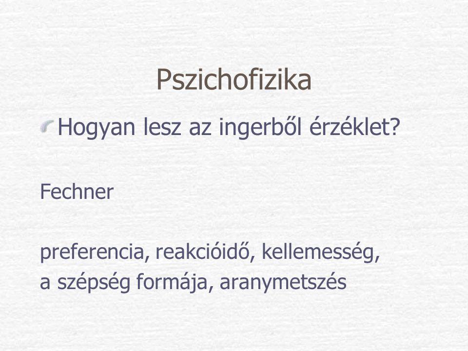 Pszichofizika Hogyan lesz az ingerből érzéklet Fechner