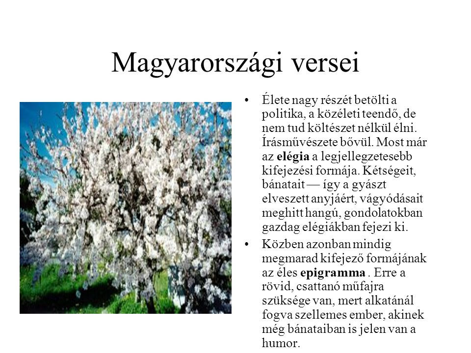 Magyarországi versei