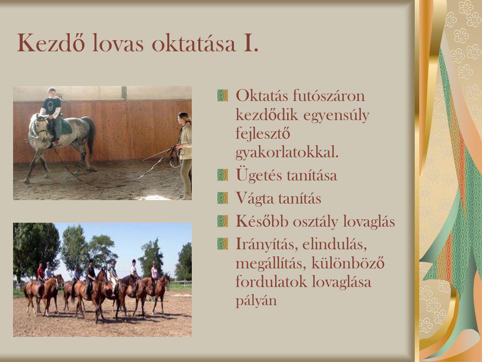 Kezdő lovas oktatása I. Oktatás futószáron kezdődik egyensúly fejlesztő gyakorlatokkal. Ügetés tanítása.