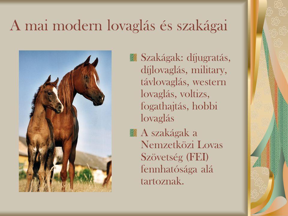 A mai modern lovaglás és szakágai
