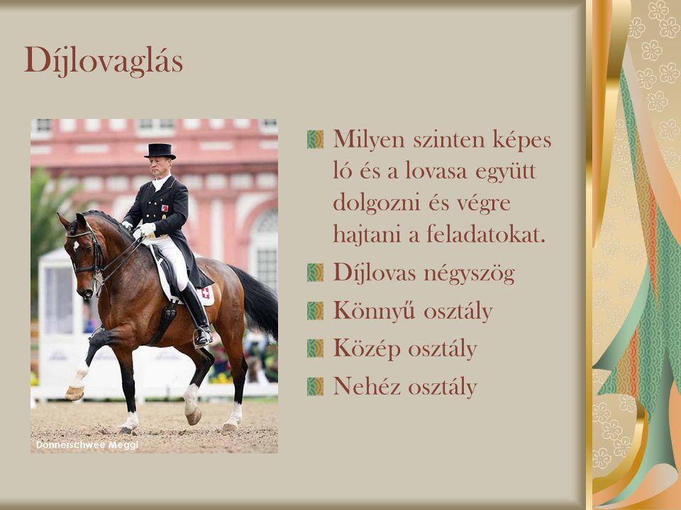 Díjlovaglás Milyen szinten képes ló és a lovasa együtt dolgozni és végre hajtani a feladatokat. Díjlovas négyszög.