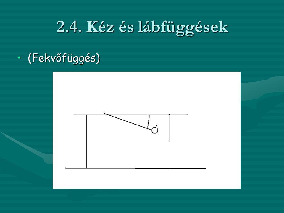 2.4. Kéz és lábfüggések (Fekvőfüggés)