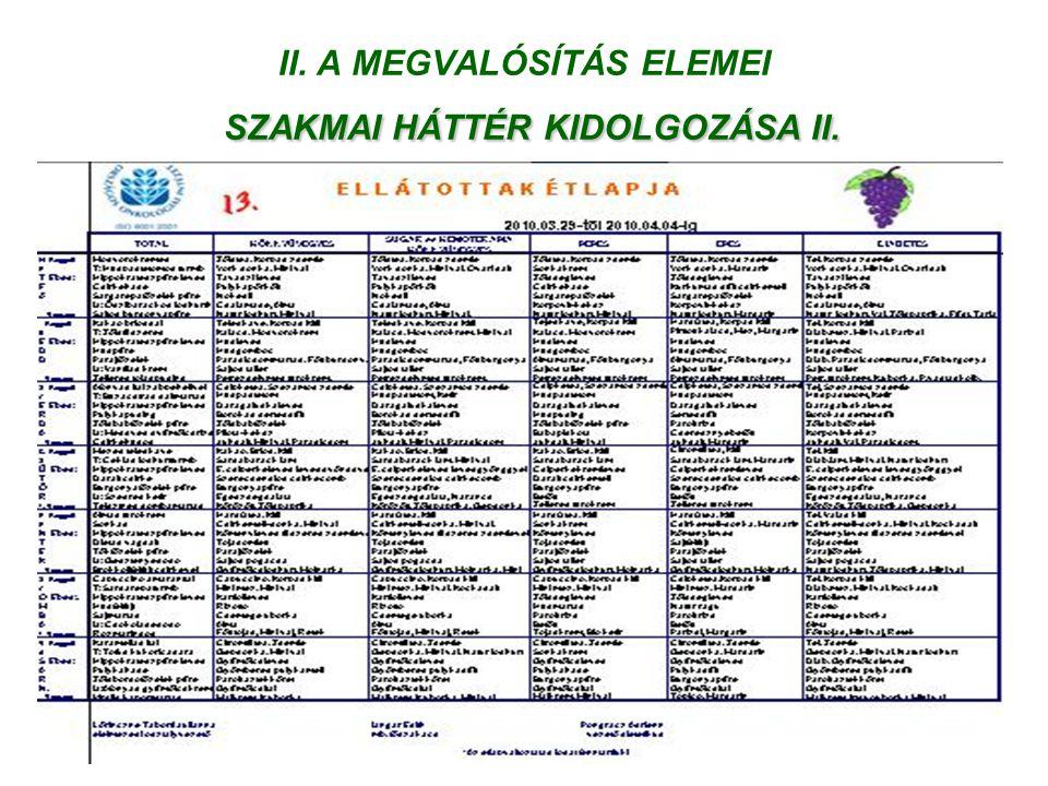 II. A MEGVALÓSÍTÁS ELEMEI SZAKMAI HÁTTÉR KIDOLGOZÁSA II.