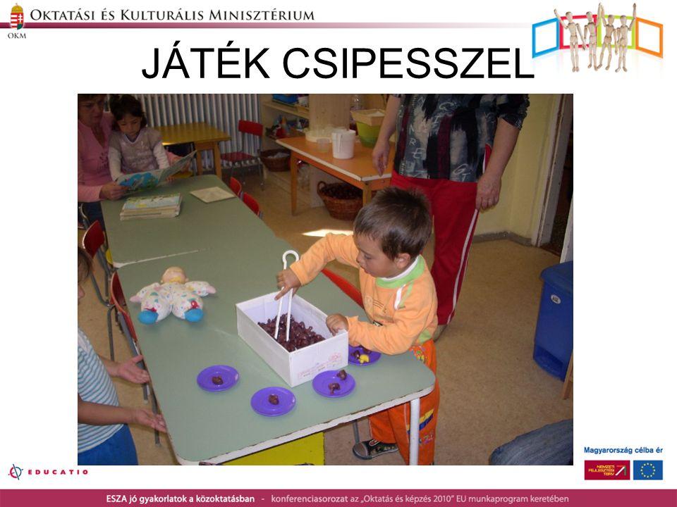 JÁTÉK CSIPESSZEL