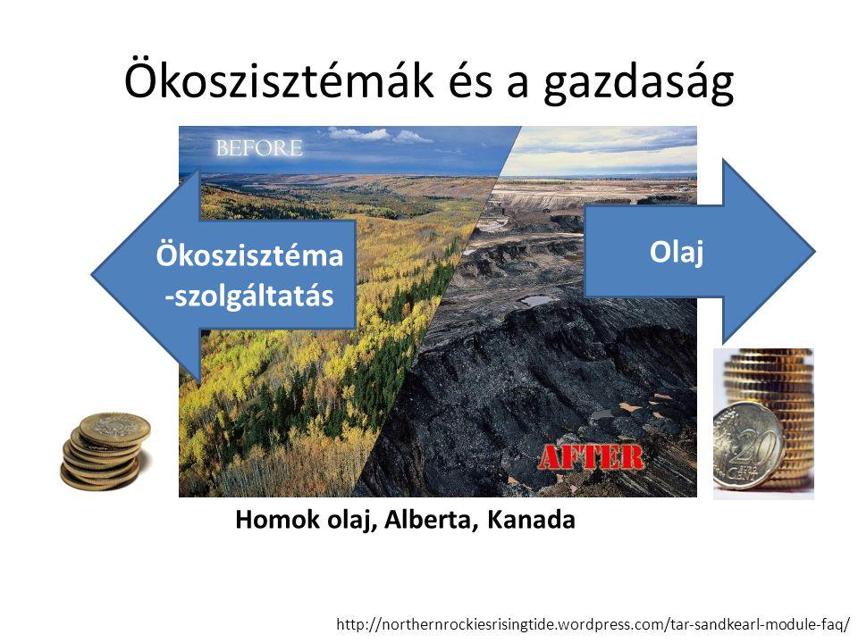 Ökoszisztémák és a gazdaság
