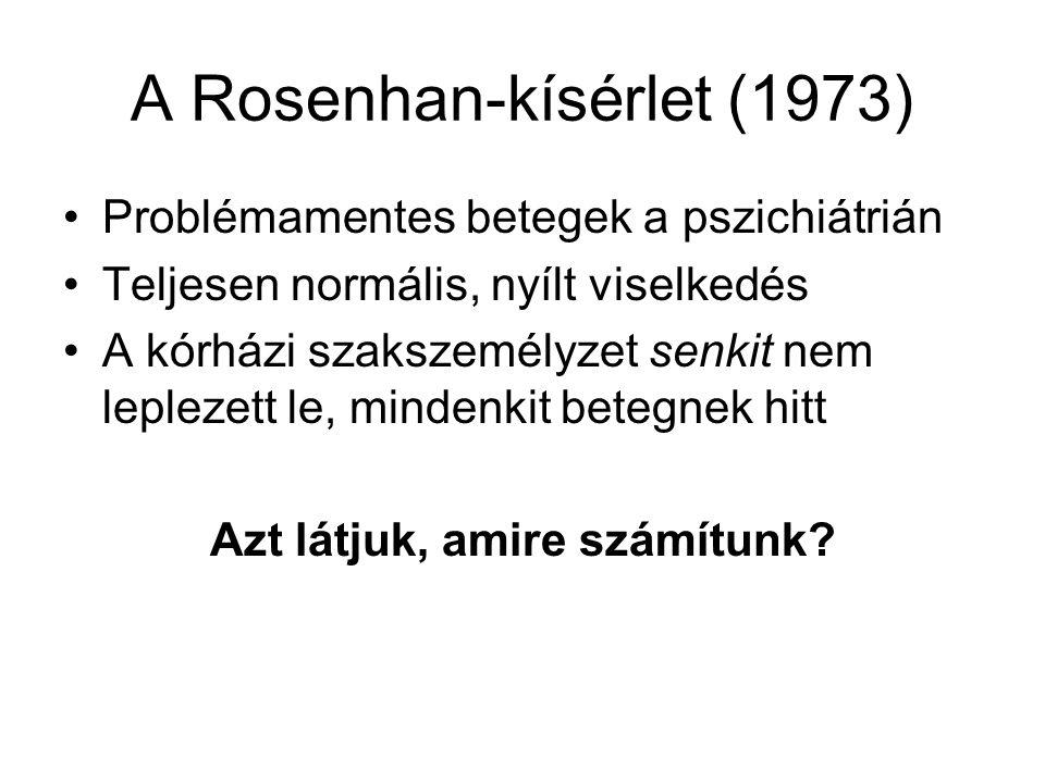 A Rosenhan-kísérlet (1973)