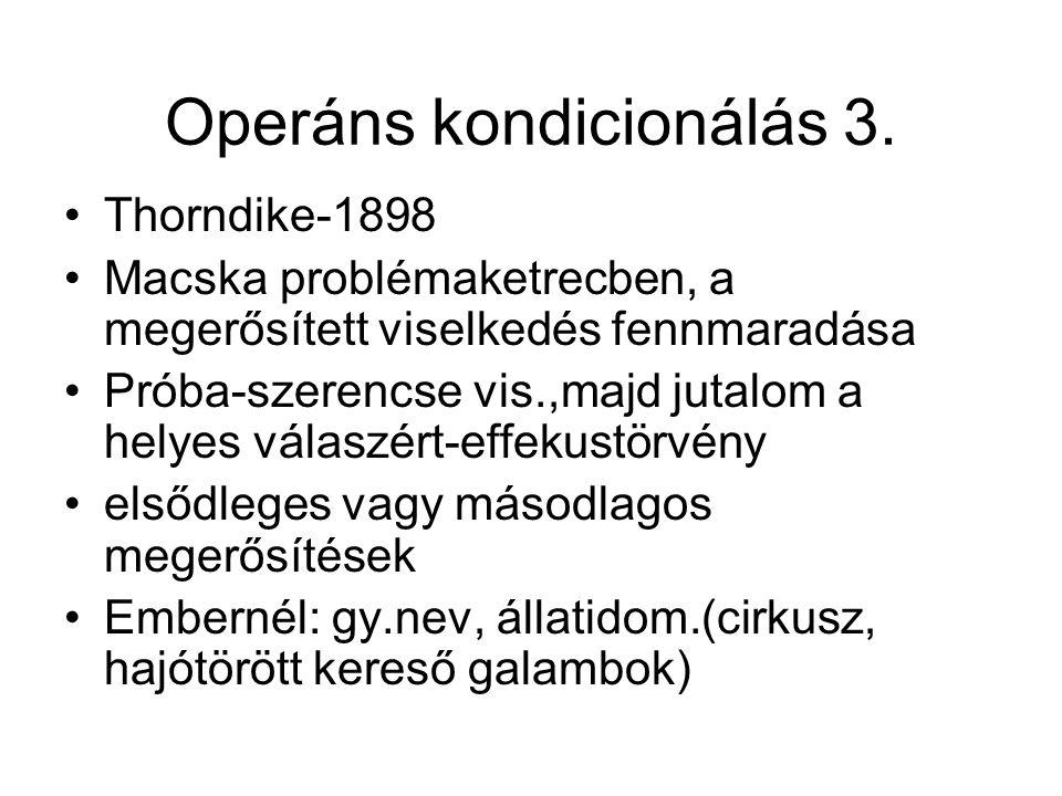 Operáns kondicionálás 3.