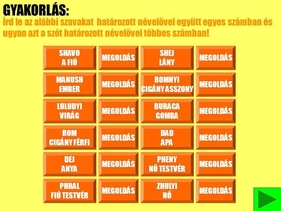 GYAKORLÁS: Írd le az alábbi szavakat határozott névelővel együtt egyes számban és ugyan azt a szót határozott névelővel többes számban!