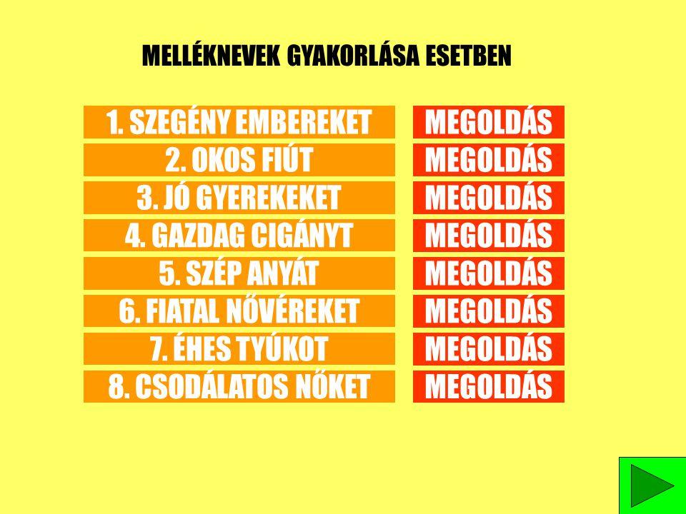 MELLÉKNEVEK GYAKORLÁSA ESETBEN