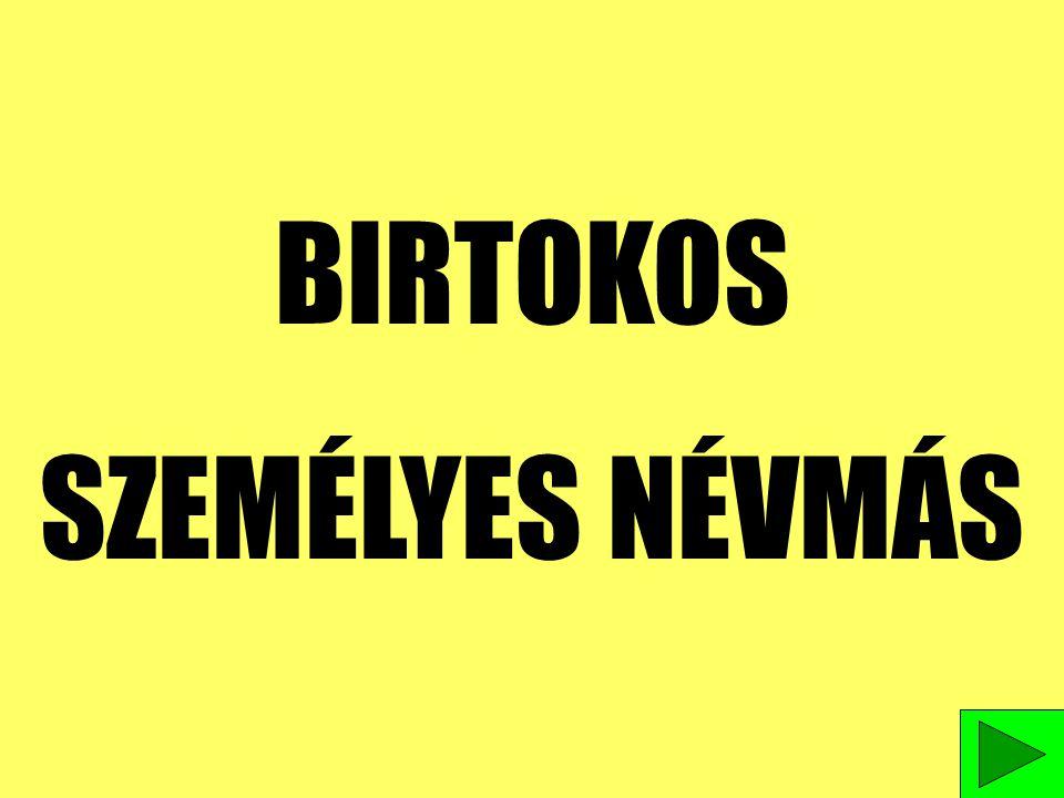 BIRTOKOS SZEMÉLYES NÉVMÁS