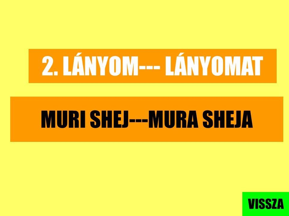 MURI SHEJ---MURA SHEJA