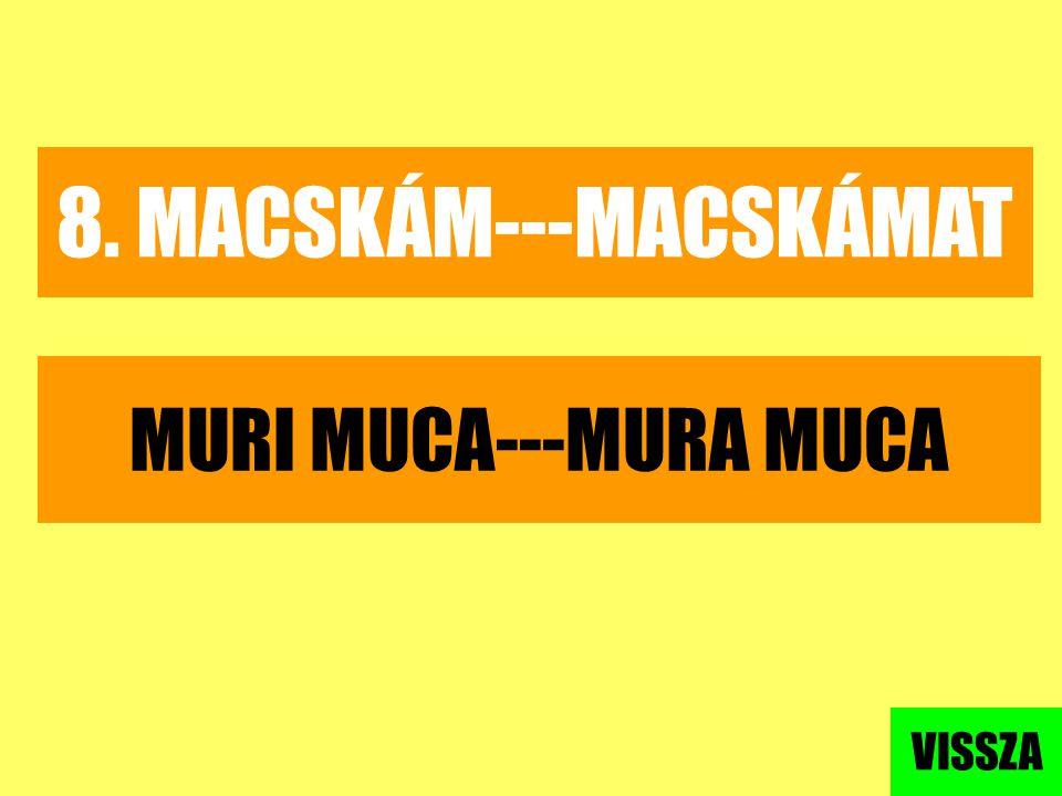 8. MACSKÁM---MACSKÁMAT MURI MUCA---MURA MUCA VISSZA