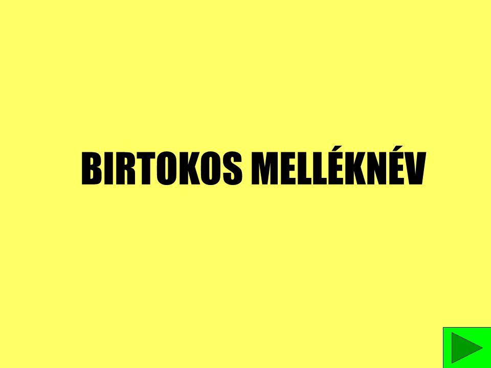 BIRTOKOS MELLÉKNÉV