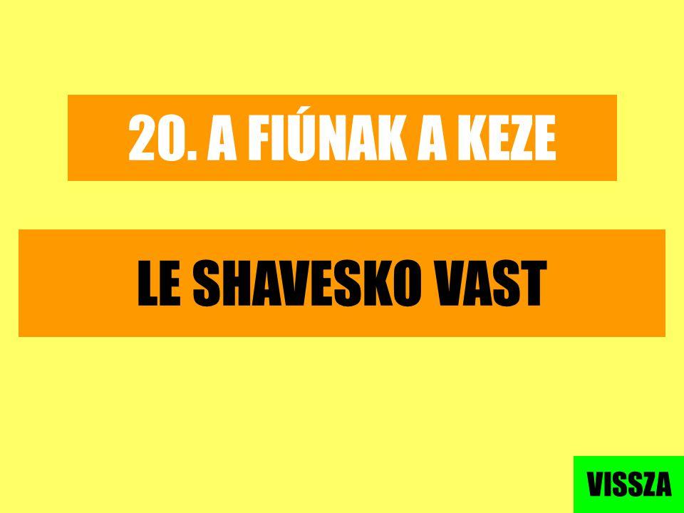 20. A FIÚNAK A KEZE LE SHAVESKO VAST VISSZA