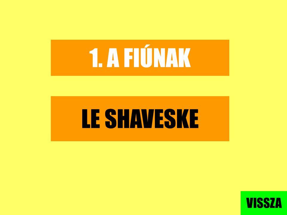 1. A FIÚNAK LE SHAVESKE VISSZA