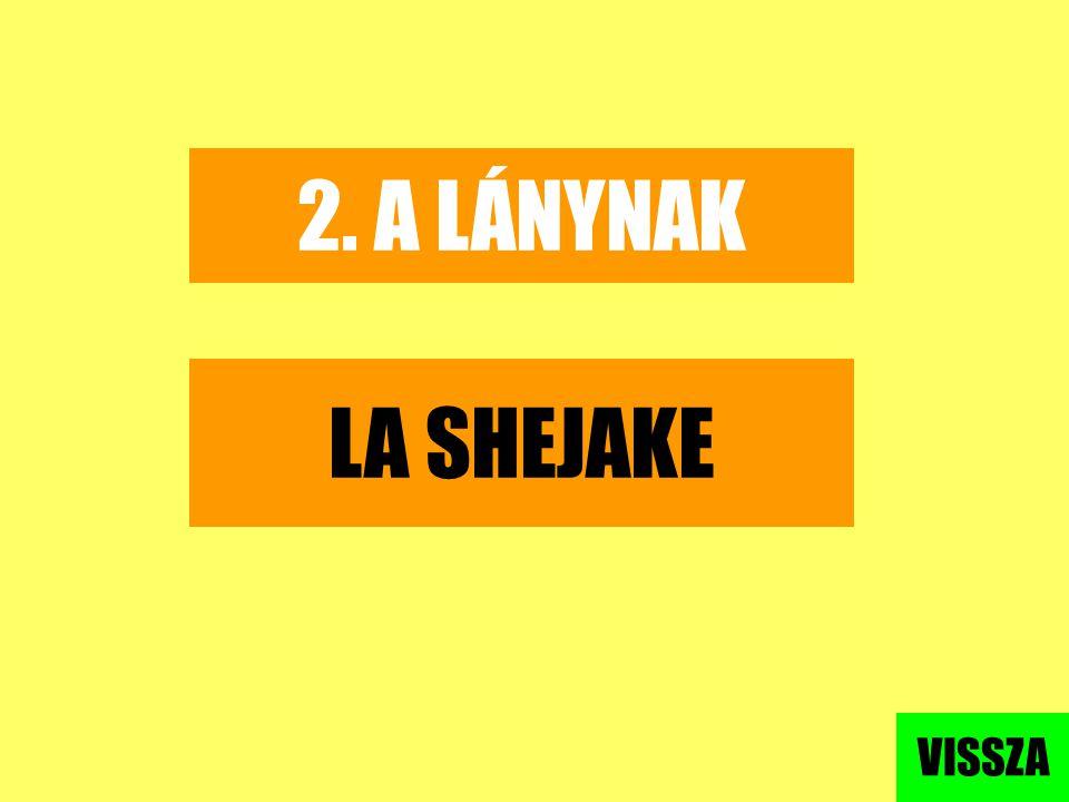 2. A LÁNYNAK LA SHEJAKE VISSZA