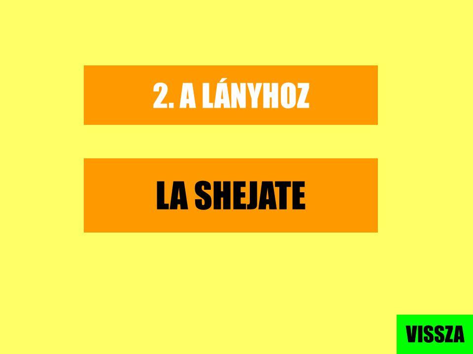 2. A LÁNYHOZ LA SHEJATE VISSZA