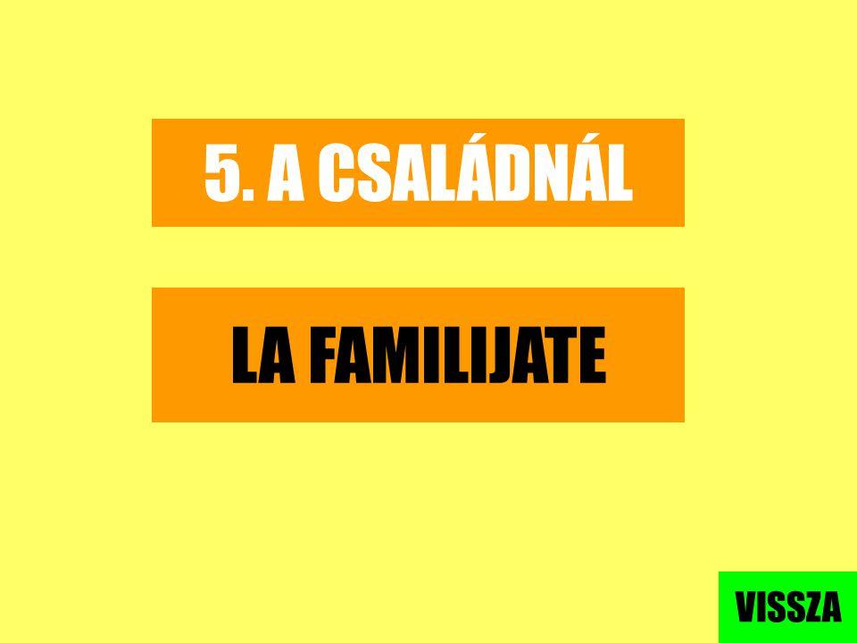 5. A CSALÁDNÁL LA FAMILIJATE VISSZA