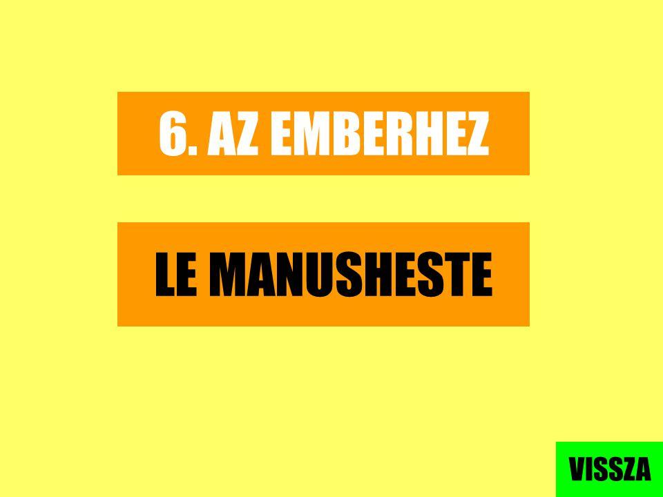 6. AZ EMBERHEZ LE MANUSHESTE VISSZA