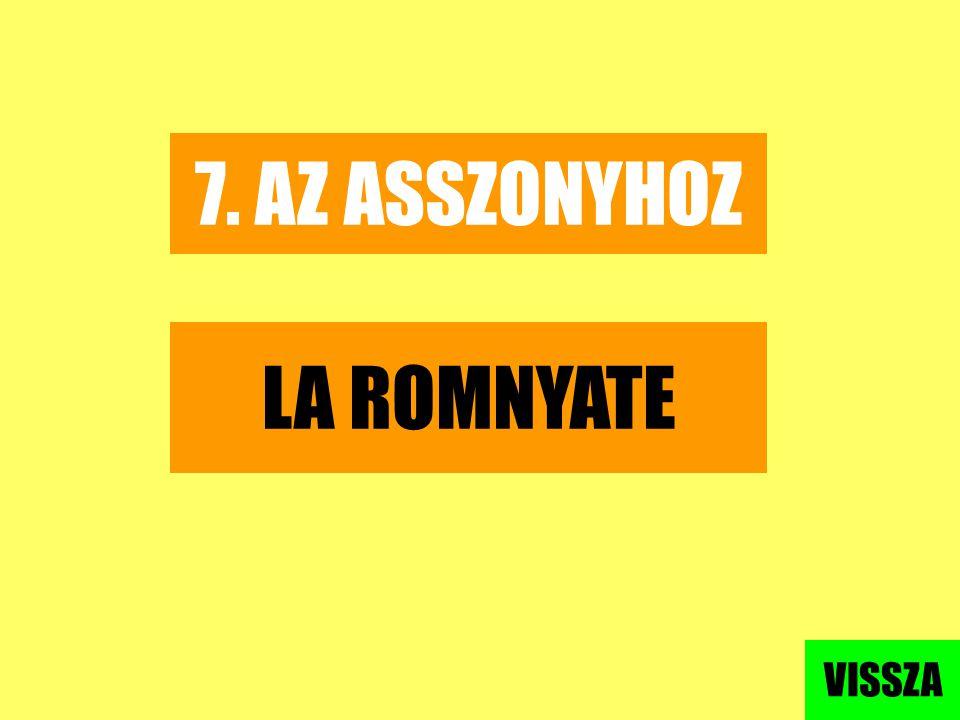 7. AZ ASSZONYHOZ LA ROMNYATE VISSZA