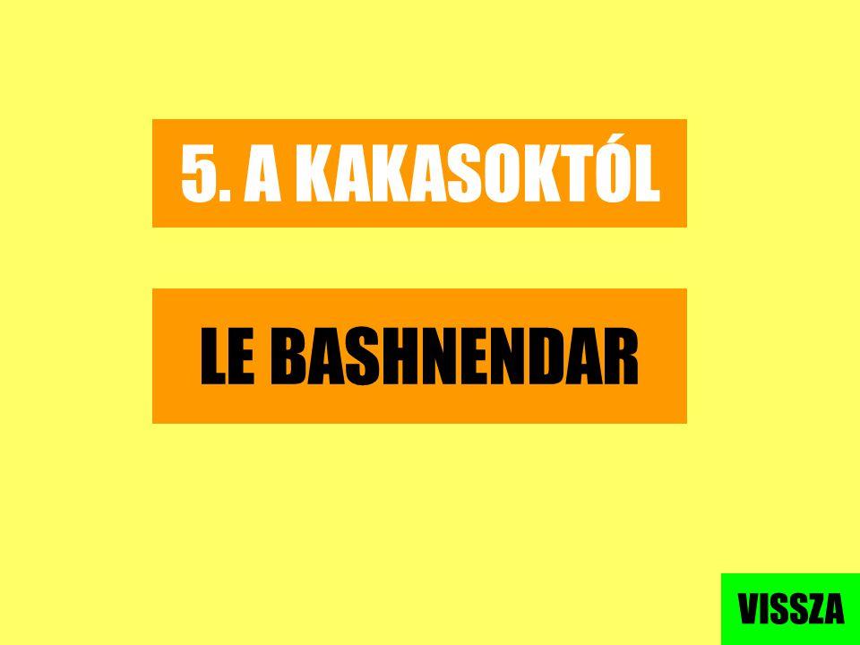 5. A KAKASOKTÓL LE BASHNENDAR VISSZA