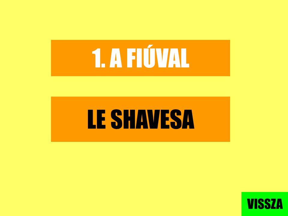 1. A FIÚVAL LE SHAVESA VISSZA